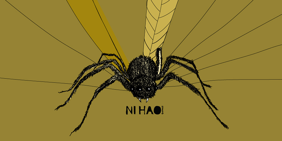 Illustration of a spider with green background.